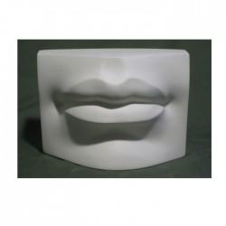 Гипсовые губы Давида