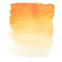"""Индийская золотистая акварель """"Белые ночи"""", кювет 2.5 мл."""