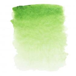 """Травяная зеленая акварель """"Белые ночи"""", кювет 2.5 мл."""