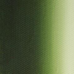Масляная краска травяная зелёная Мастер-класс, 46 мл.
