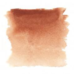 Акварельная краска Сиена жженая Белые ночи, кювет 2.5 мл.