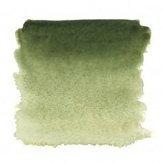 Акварельная краска Земля зеленая Белые ночи, кювет 2.5 мл.
